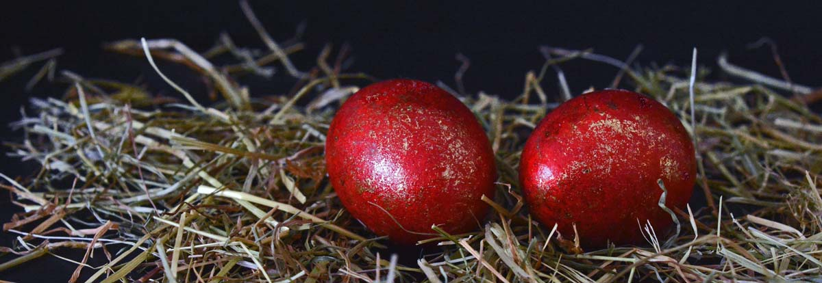 more-greece-branch-plant-hay-fruit-cute-easter-pascha-greece